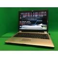 Ноутбук RoverBook Pro 401VS